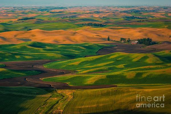 The Palouse Waves Poster