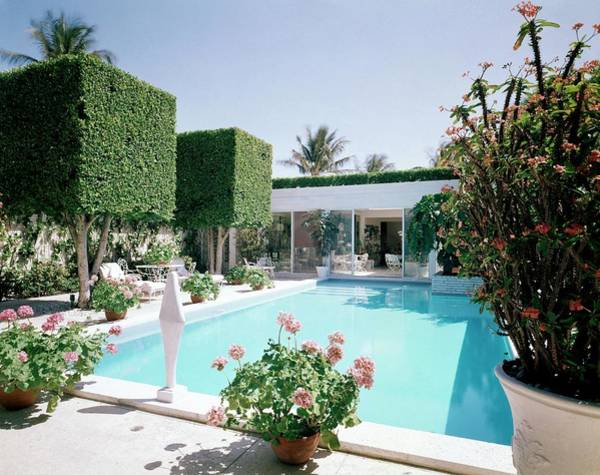 The Pool And Garden Of A Home Poster