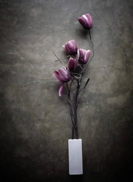 The Purple Tulip Poster