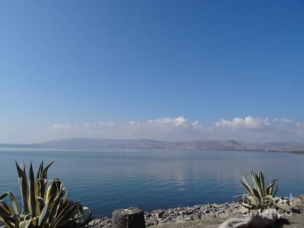 The Sea Of Galilee At Capernaum Poster