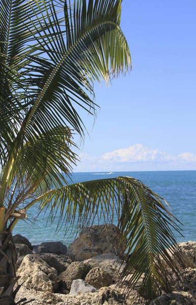 Key West Ocean View Poster