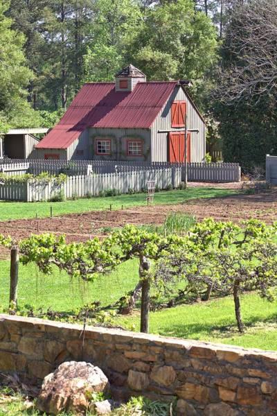 The Vineyard Barn Poster