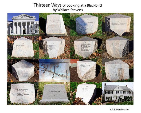 Thirteen Ways Of Looking At A Blackbird Poster