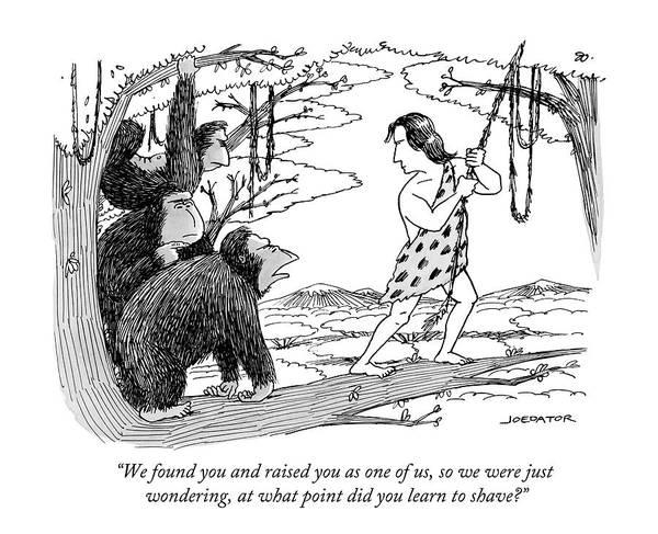 Three Gorillas Talk To Tarzan Poster