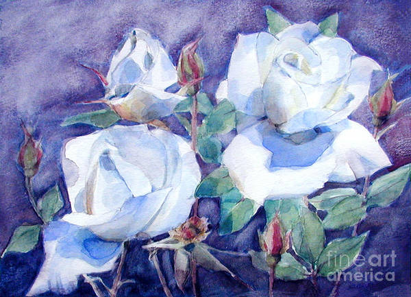White Roses With Red Buds On Blue Field Poster