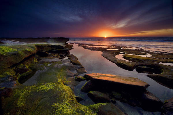 Tidepool Sunsets Poster