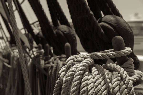 Tied Up Black And White Sepia Poster