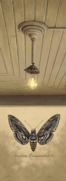 Toward The Light Poster