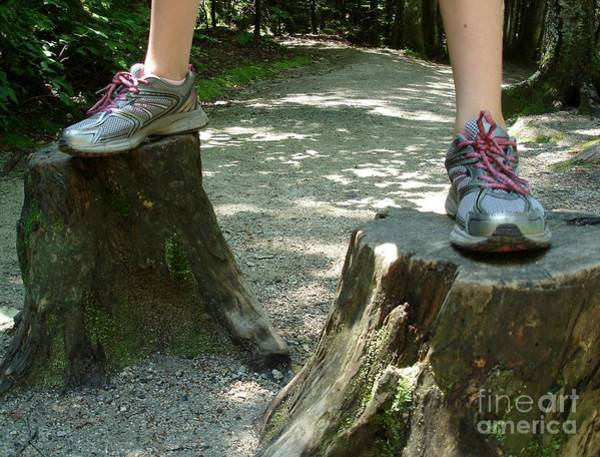 Tree Stump Stilts Poster