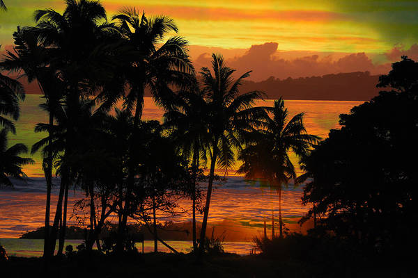 Tropical Sunset In Greens Poster