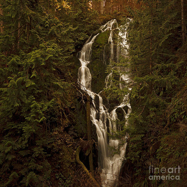 Twilight Waterfalls  Poster
