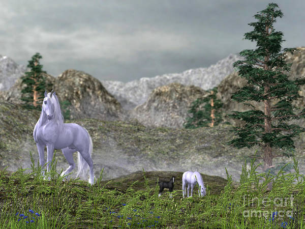 Unicorns In The Mountains Poster