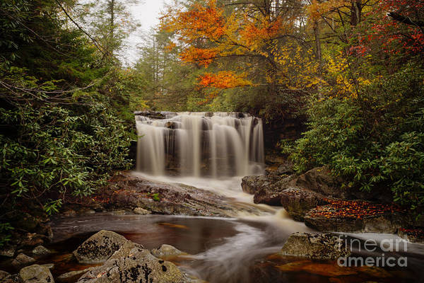 Upper Falls Waterfall On Big Run River  Poster
