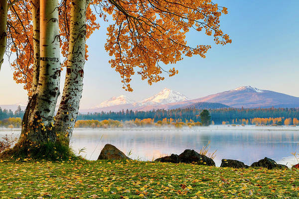 Usa, Oregon, Bend, Fall At Black Butte Poster