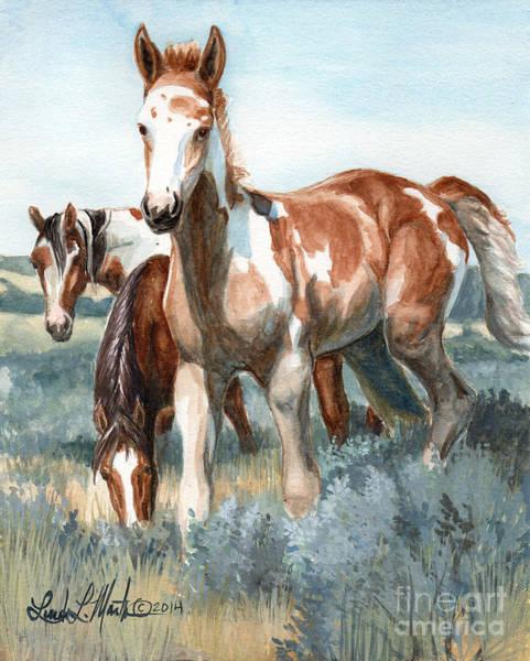 Van Gogh Of Sand Wash Basin Colorado Poster