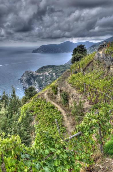 Vineyards Above Cinque Terre 1 Poster