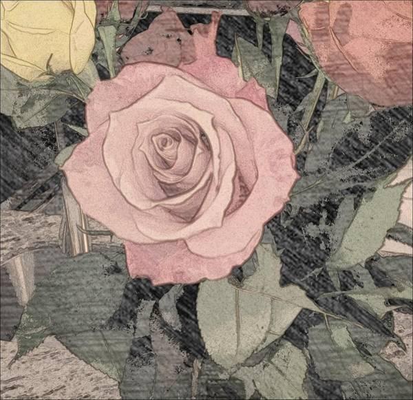 Vintage Romance Rose Poster