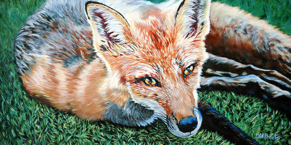 Poster featuring the painting Vixen - Red Fox by Donna Proctor