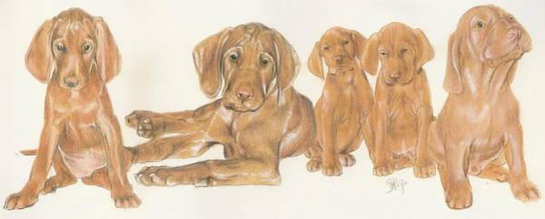Vizsla Puppies Poster