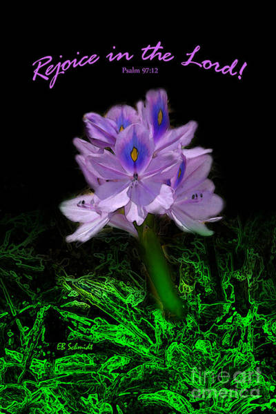 Water Hyacinth - Psalm 97 Poster
