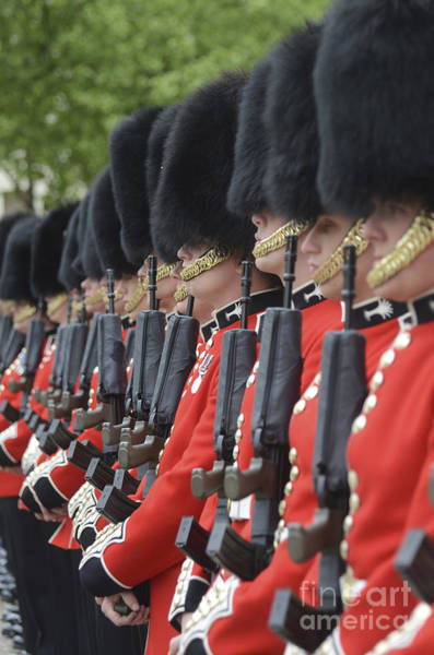 Welsh Guards Stand In Formation Poster