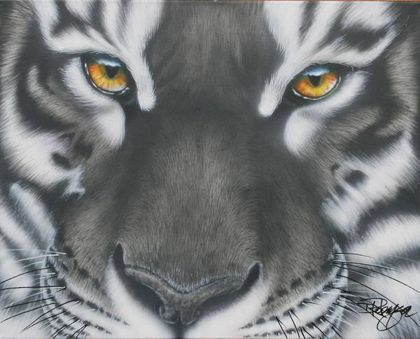 White And Black Tiger Poster