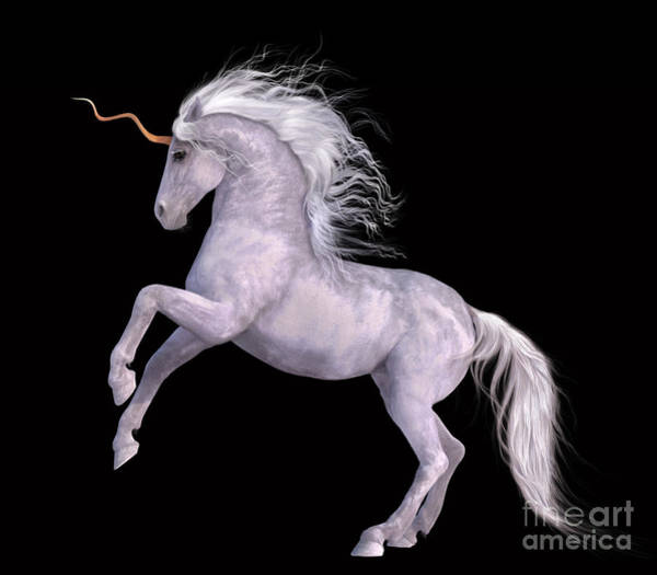 White Unicorn Black Background Half Rear Poster