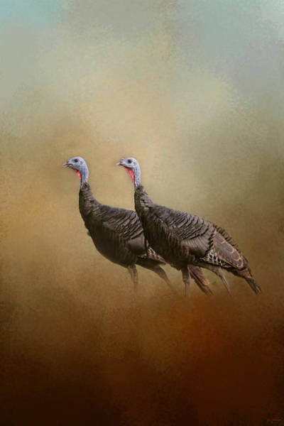 Wild Turkey At Shiloh Poster