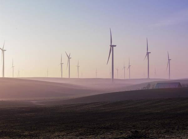 Wind Farm At Dawn Poster