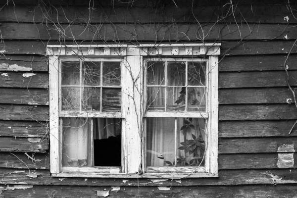 Window Dressing Poster