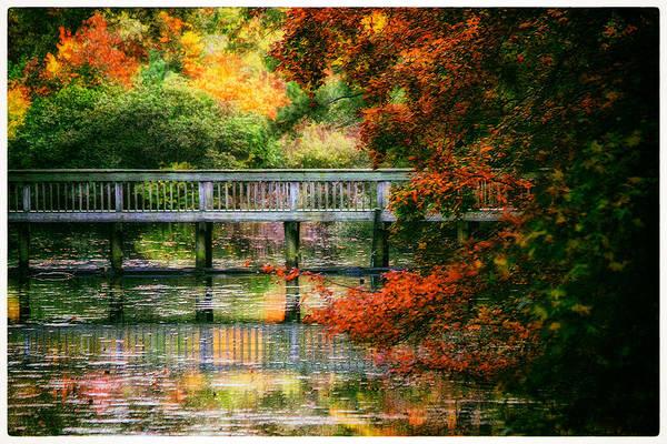 Window Into Autumn Poster