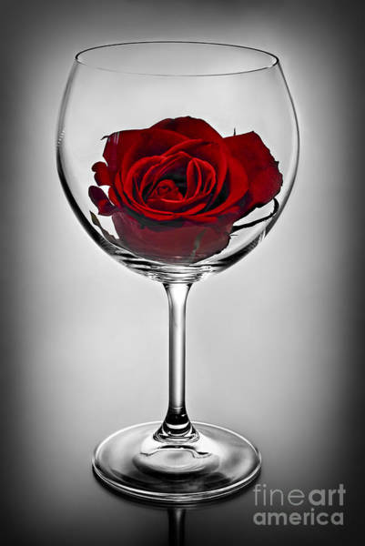 Wine Glass With Rose Poster