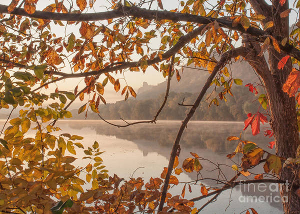Winona Photograph Sugarloaf Through Leaves Poster