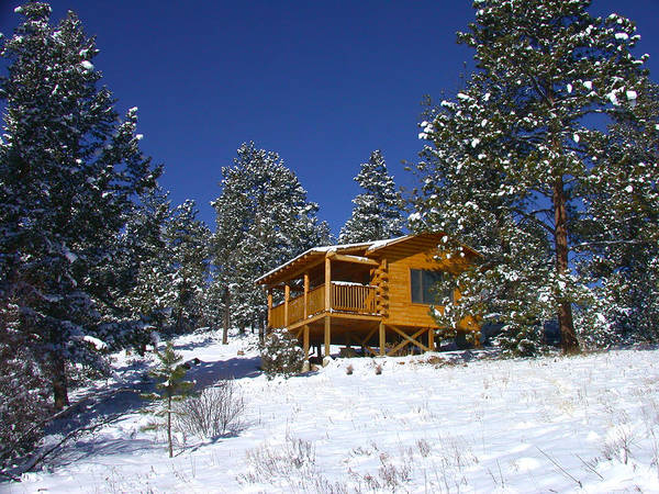 Poster featuring the photograph Winter Cabin by Shane Bechler