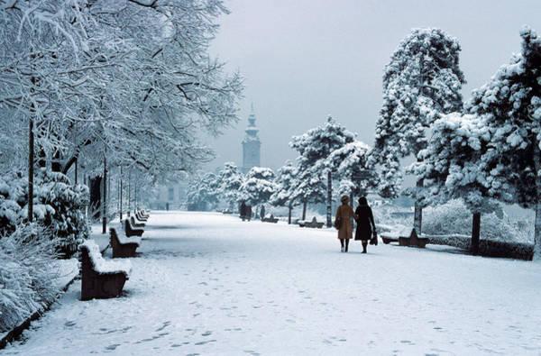 Winter In Belgrade Poster