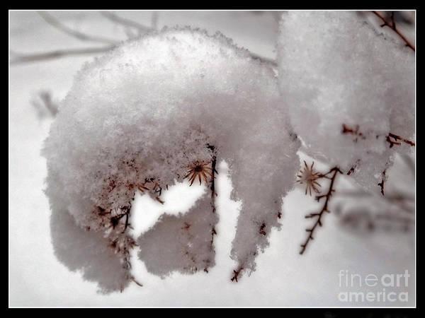 Winter On Aberdeen Poster