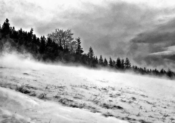 Winter Storm Poster