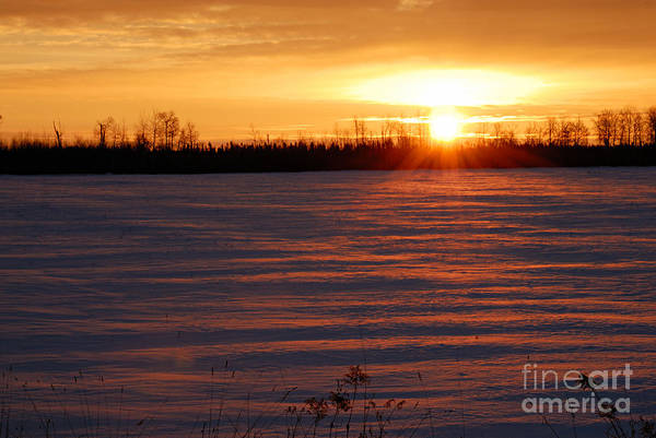 Winter Sunrise Poster