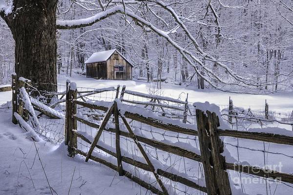 Winter's Mystique   Poster