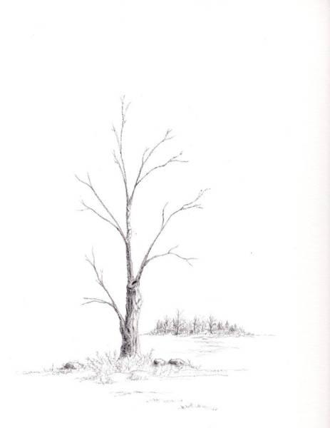 Winter's Tree Poster