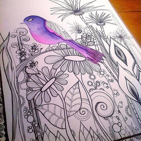 #wip #birdart #gardenart #flowers Poster
