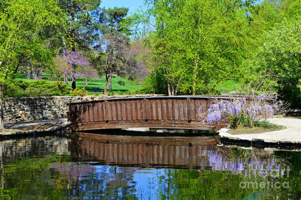 Wisteria In Bloom At Loose Park Bridge Poster