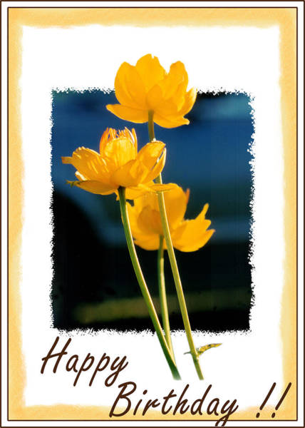 Yellow Flower 1 Poster