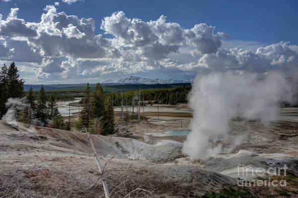 Poster featuring the photograph Yellowstone's Norris Geyser Basin by Bill Gabbert