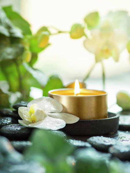Zen Orchid And Candle Poster