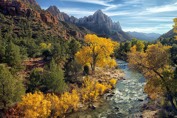 Poster featuring the photograph Zion National Park In Fall by Gigi Ebert