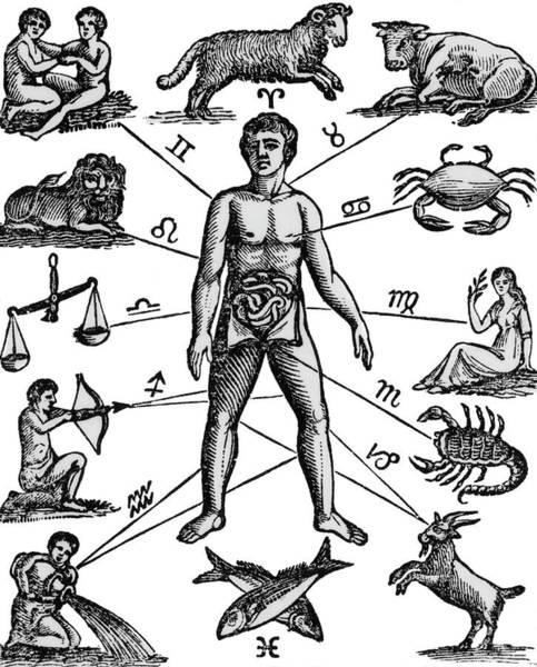 Zodiac Man Drawing Relating Astrology Poster