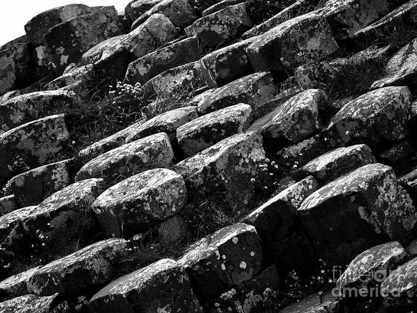 Another View Of The Giants Causeway Poster