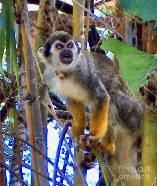 Monkeyshines Poster