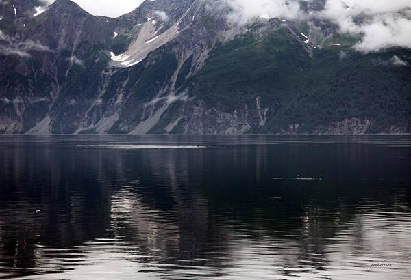 Alaskan Mountain Scene Whales Poster